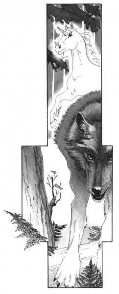 TARABUL, bw 2, © Shark Publishing