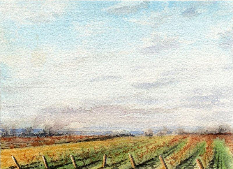 FALL BURN, watercolour on 140lb. CP, 5 1/2 IN H X 7 IN. W