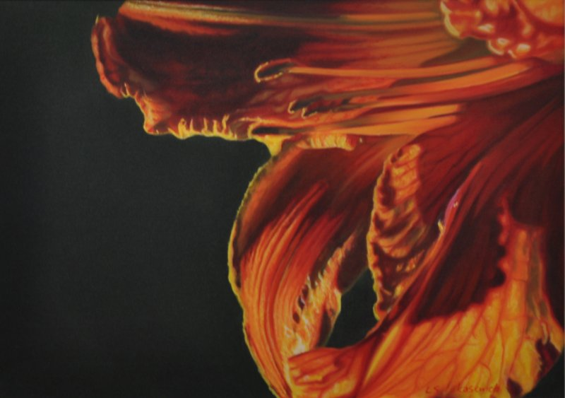 DAYLILY, oil & alkyd on canvas, 20 in. H x 28 in. W, SOLD