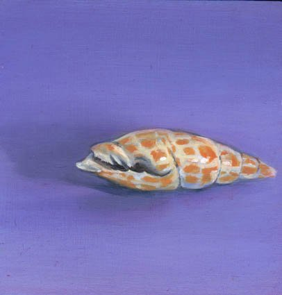 BLUE SHELL STUDY, oil & alkyd on panel, 6 in. x 6 in., SOLD