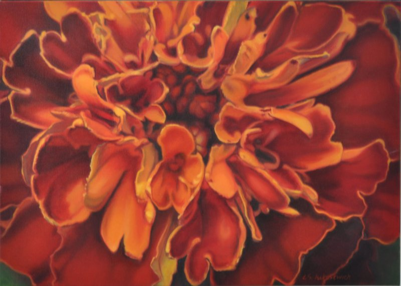 MARIGOLD, oil & alkyd on canvas, 20 in. H x 28 in. W, $2000.00Cdn
