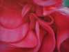 GERANIUM, oil & alkyd on canvas, 20 in. H x 28 in. W, $2000.00Cdn