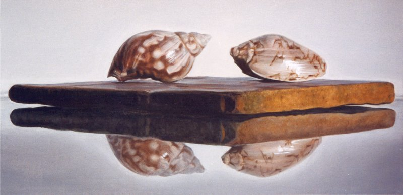 SMALL SHELLS, oil & alkyd on canvas, 12 in. H x 24 in. W, SOLD